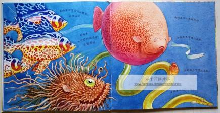 《一条聪明的鱼》内页2
