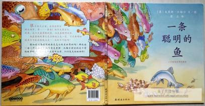 《一条聪明的鱼》封面