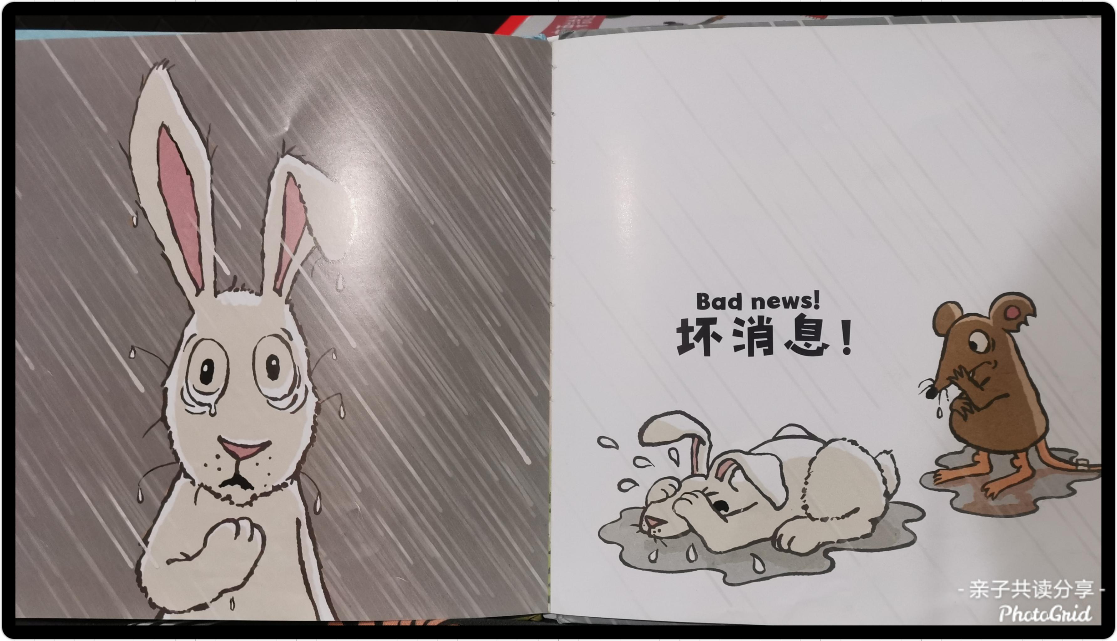 《好消息坏消息》内页- 兔子泪崩了