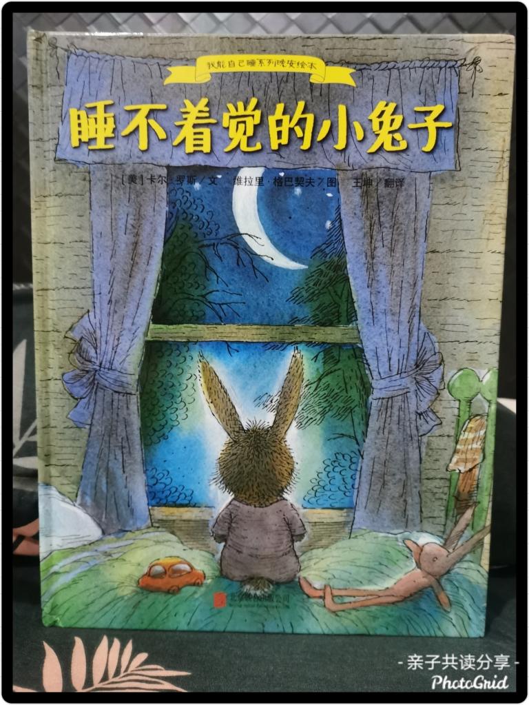 《睡不着觉的小兔子》封面