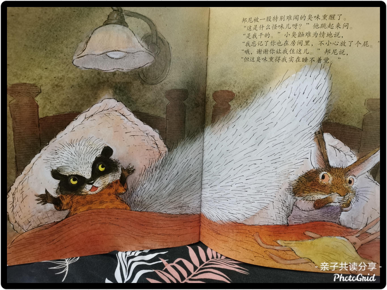 《睡不着觉的小兔子》内页